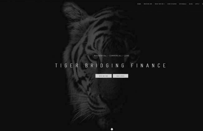 web design finance